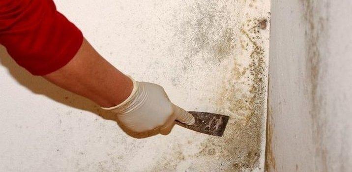 pintoresde casas en madrid capital